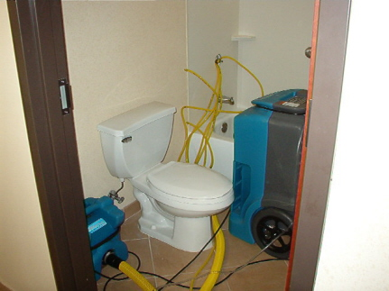 Bathroom Dehumidifier on More About This Process On Our  Home Page  Or Our  Water Damage  Pages